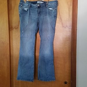 torrid Jeans - Torrid Jeans
